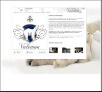 Valemon - utleie av eiendom